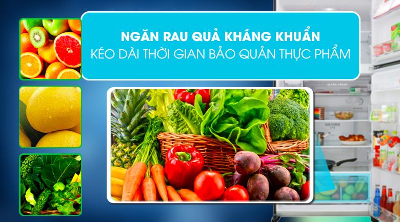 Tủ lạnh Toshiba Inverter 555 lít GR-AG58VA XK - kéo dài thời gian bảo quản thực phẩm với ngăn rau quả kháng khuẩn
