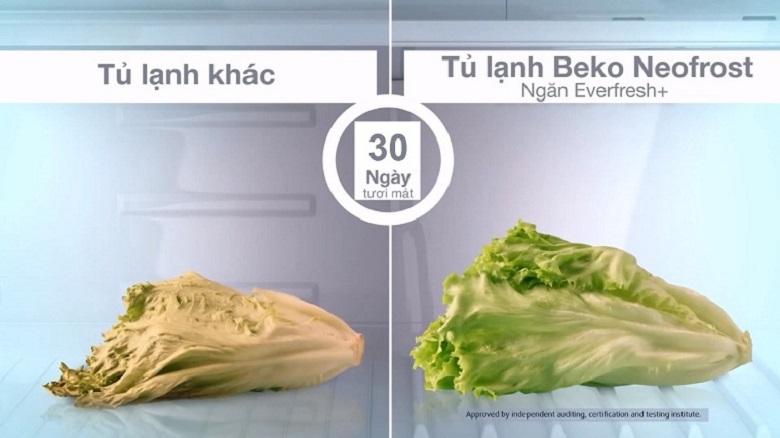 Công nghệ Everfresh+ - Tủ lạnh Beko Inverter 420 lít RDNT470E50VZJGB