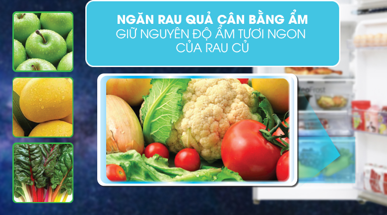 Ngăn rau - Tủ lạnh Aqua Inverter 186 lít AQR-T219FA