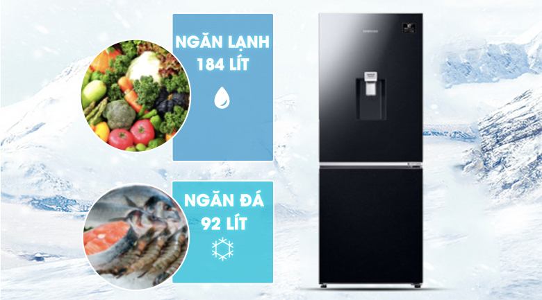 Dung tích-Tủ lạnh Samsung Inverter 276 lít RB27N4170BU/SV