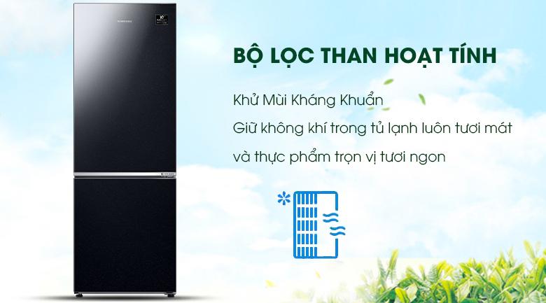 Bộ lọc than hoạt tính - Tủ lạnh Samsung Inverter 310 lít RB30N4010BU/SV