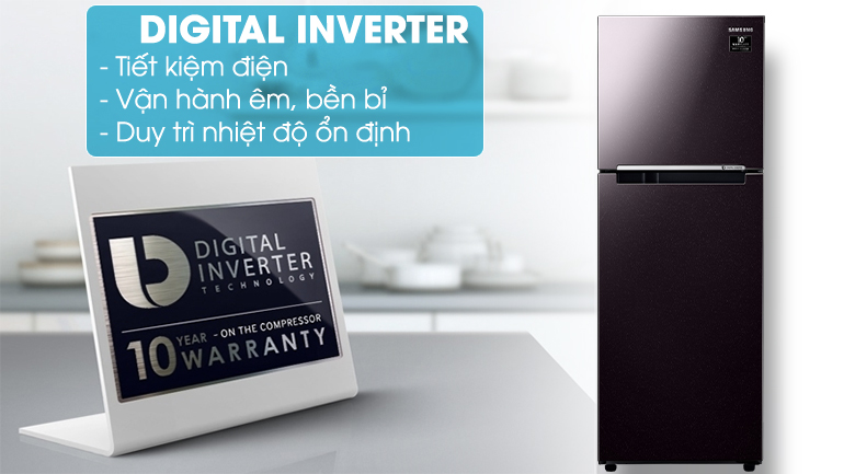 Digital Inverter - Tủ lạnh Samsung Inverter 236 lít RT22M4032BY/SV