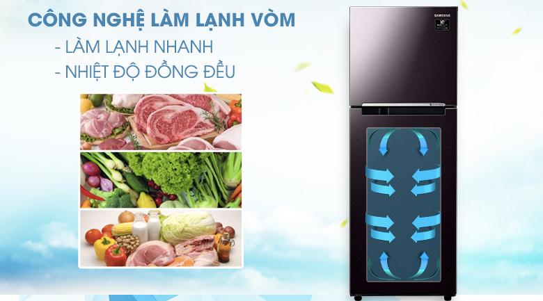 Làm lạnh vòm - Tủ lạnh Samsung Inverter 236 lít RT22M4032BY/SV