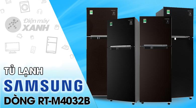Tủ lạnh Samsung Inverter 256 lít RT25M4032BU/SV