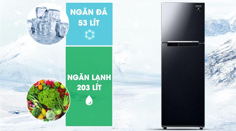 256 lít - Tủ lạnh Samsung RT25M4032BU/SV