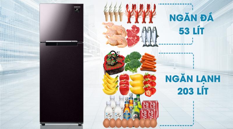 Tủ lạnh Samsung Inverter 256 lít RT25M4032BY/SV-Dung tích 256 lít, phù hợp gia đình nhỏ, khoảng 2 - 3 thành viên