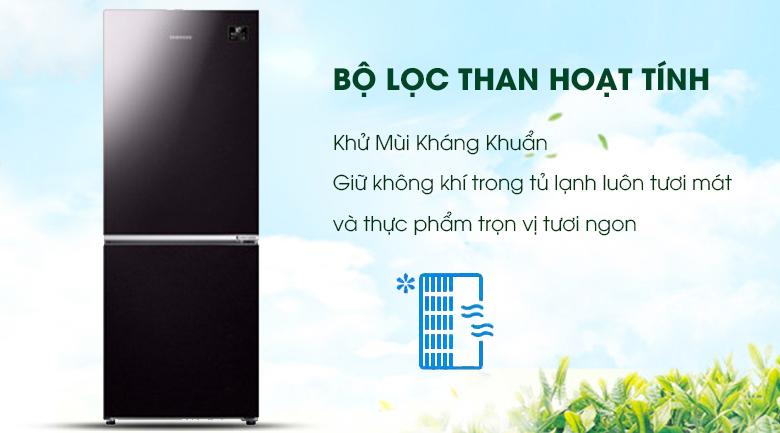 Bộ lọc than hoạt tính - Tủ lạnh Samsung Inverter 280 lít RB27N4010BY/SV