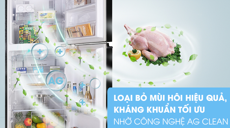 Bộ lọc Ag+ Clean