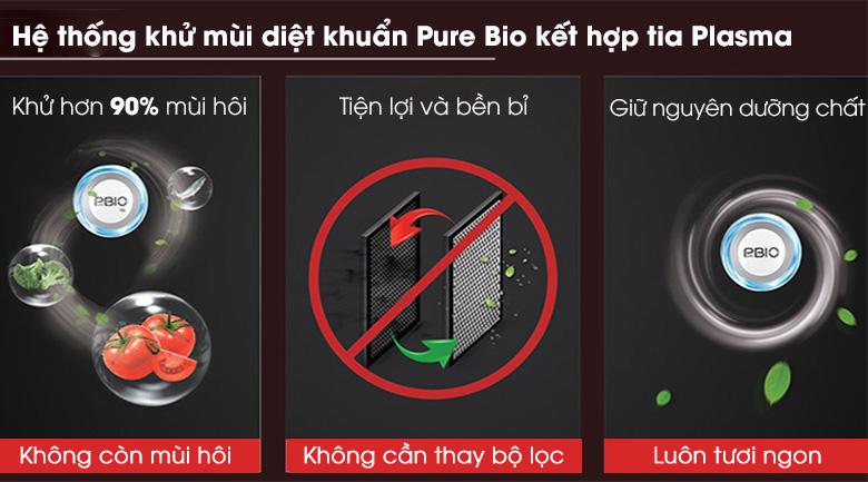 Tủ lạnh Toshiba Inverter 294 lít GR-RB385WE-PMV(30)-BS-Diệt khuẩn, loại bỏ mùi hôi thực phẩm tối ưu nhờ công nghệ PureBio