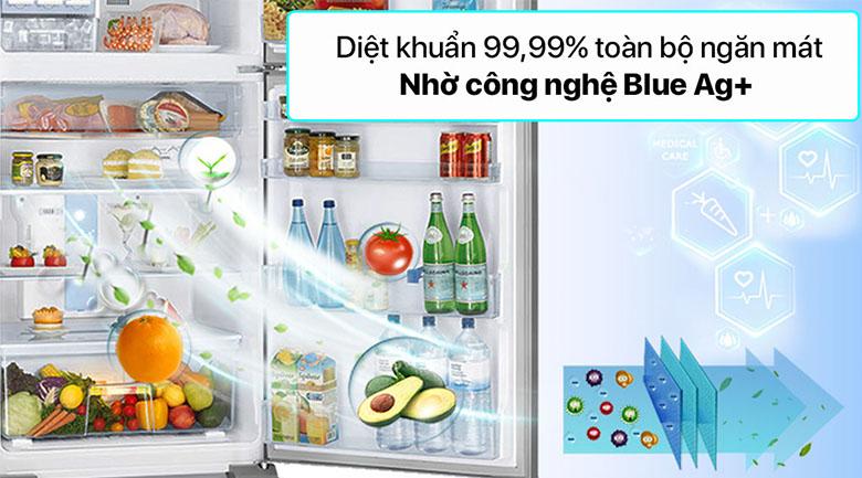 Tủ lạnh Panasonic Inverter 234 lít NR-TV261APSV - Công nghệ Blue Ag+