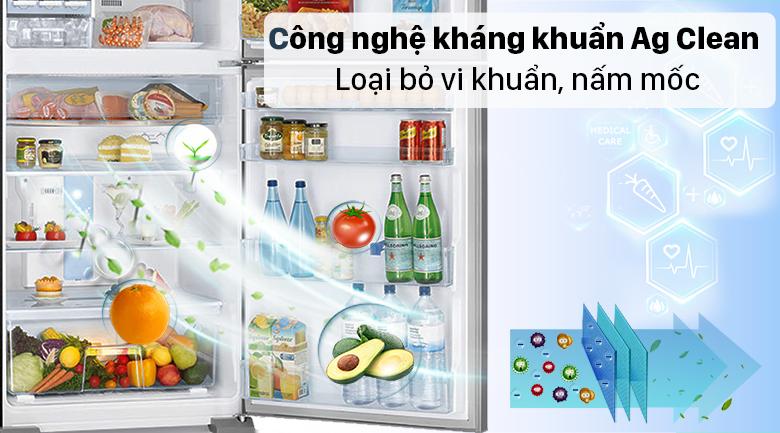 Tủ lạnh Panasonic Inverter 234 lít NR-TV261APSV - Loại bỏ vi khuẩn, nấm mốc