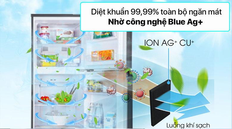 Tủ lạnh Panasonic Inverter 268 lít NR-TV301VGMV - Công nghệ Blue Ag+