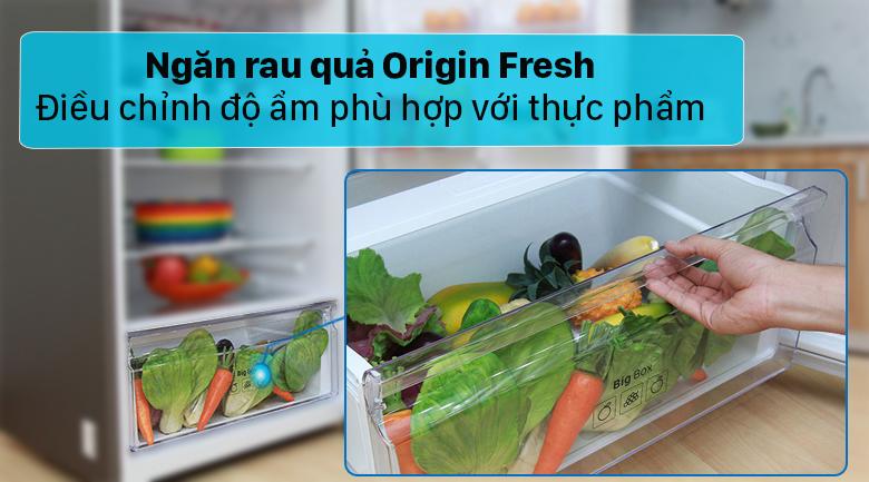 Tủ lạnh Toshiba GR-RT400WE-PMV(06)-MG - Giữ thực phẩm luôn tươi ngon