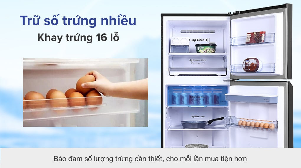 Tủ lạnh Panasonic Inverter 366 lít NR-TL381GPKV - Khay để trứng