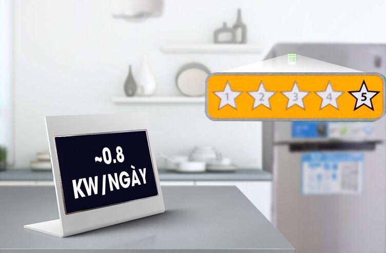 Mỗi ngày, chiếc tủ lạnh này chỉ hao phí khoảng 0.8 kW điện