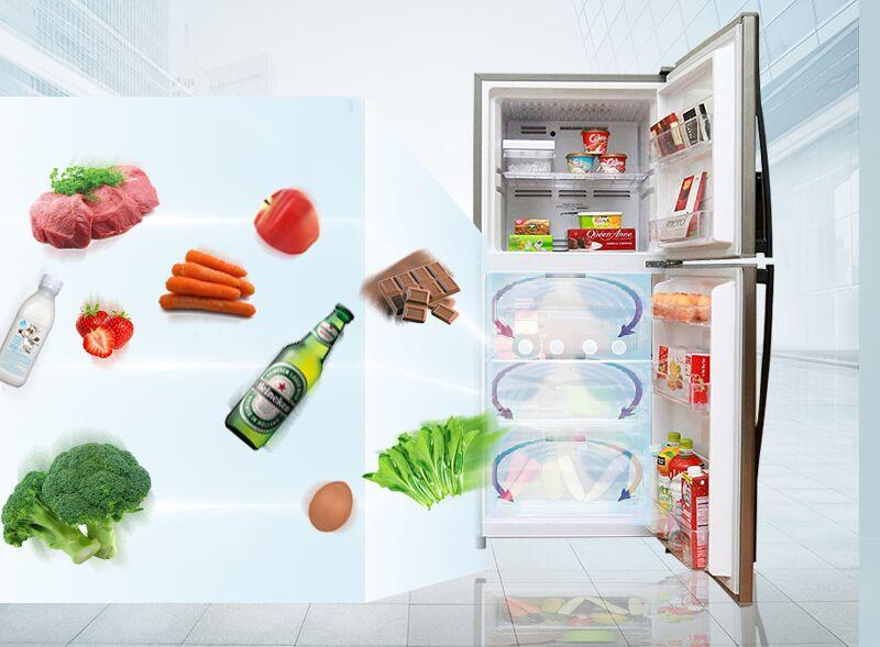 Luồng khí lạnh hình vòng cung của tủ lạnh Toshiba GR-S19VUP giúp thổi khí mát và lạnh đều