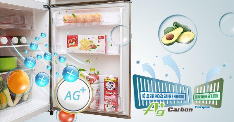 Tủ lạnh Toshiba GR-S19VUP được tích hợp bộ lọc khí Hybrid Bio