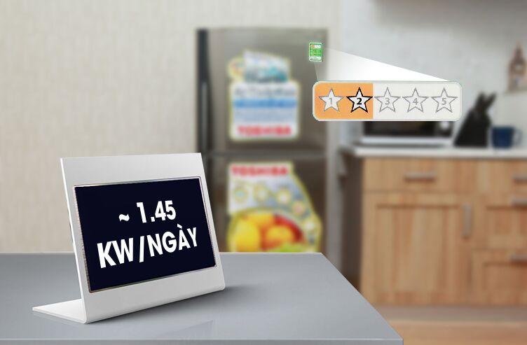Với những công nghệ đảm bảo tránh hao phí điện năng quá nhiều, tủ lạnh Toshiba GR-S19VUP chỉ tiêu tốn khoảng 1.45 kW