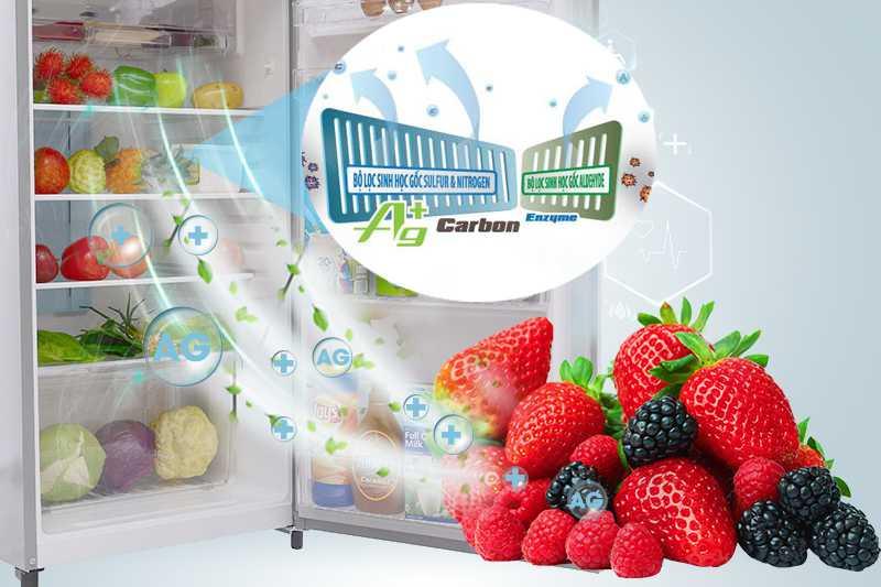 Công nghệ Hybrid Bio giúp cho tủ lạnh Toshiba GR-S25VPB được làm lạnh một cách tối ưu nhưng không bám mùi