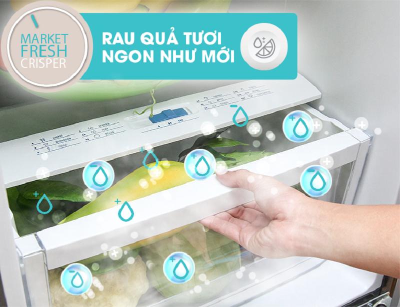 Ngăn tủ này của tủ lạnh Electrolux ETB2300PE-RVN giữ độ ẩm được ổn định