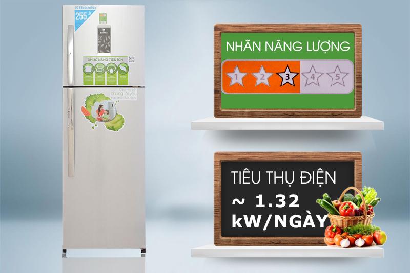 Tủ lạnh Electrolux ETB2600PE-RVN tiết kiệm năng lượng tương đối tốt