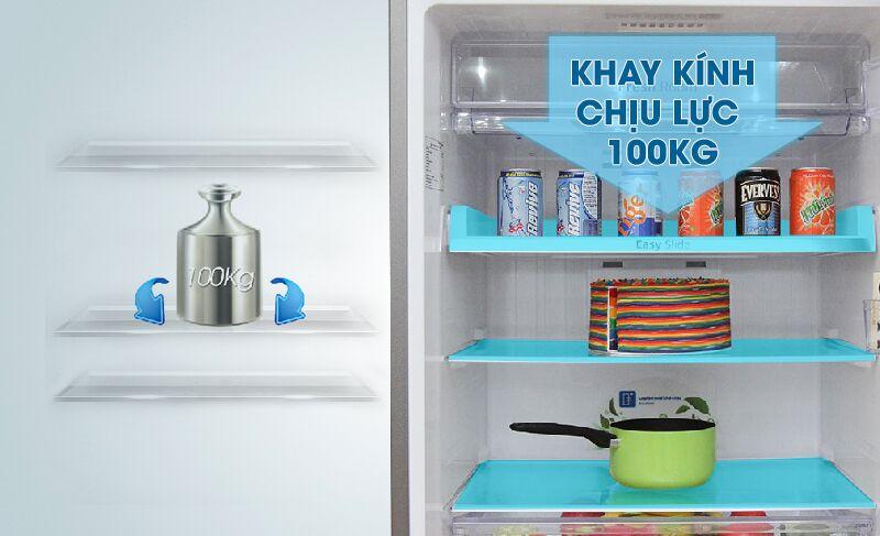 Khay kính của tủ lạnh Samsung RT43H5231SL/SV chịu được lực lớn