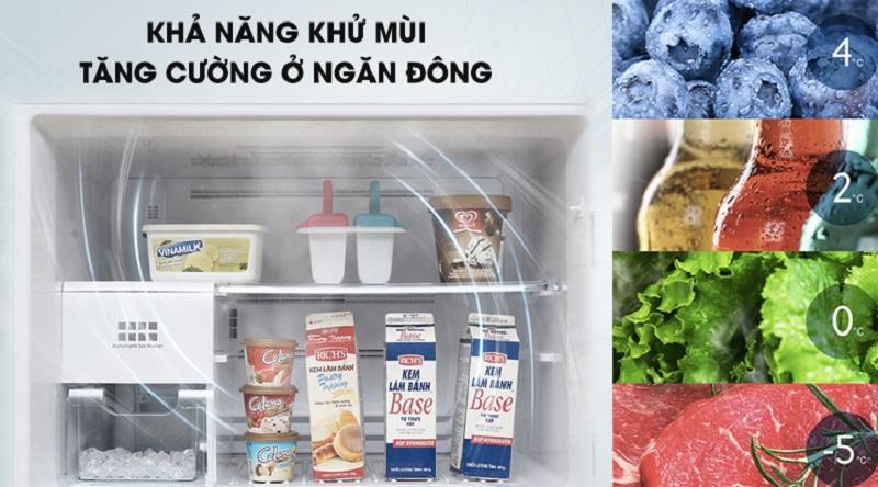 Khử mùi hiệu quả ở ngăn đông - Tủ lạnh Toshiba Inverter 600 lít GR-WG66VDAZ