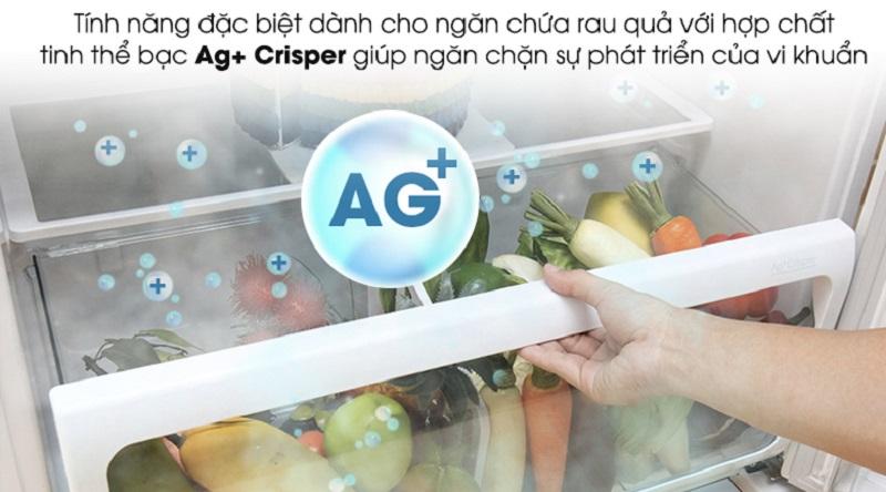 Ngăn rau củ kháng khuẩn, bảo qua được lâu hơn - Tủ lạnh Toshiba Inverter 600 lít GR-WG66VDAZ