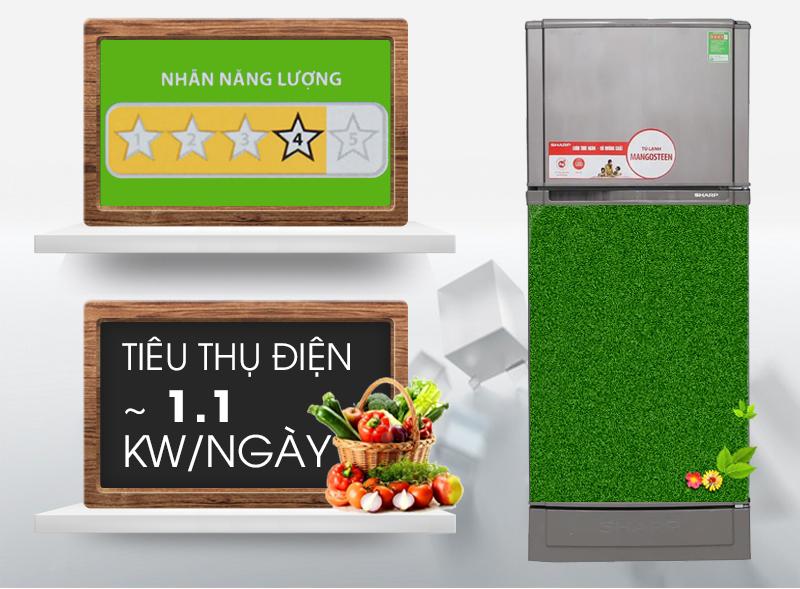 Tủ lạnh xếp hạng năng lượng 4 sao