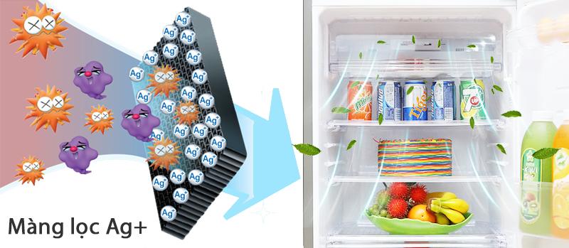 Tủ lạnh luôn được sạch thoáng, không bám mùi hôi
