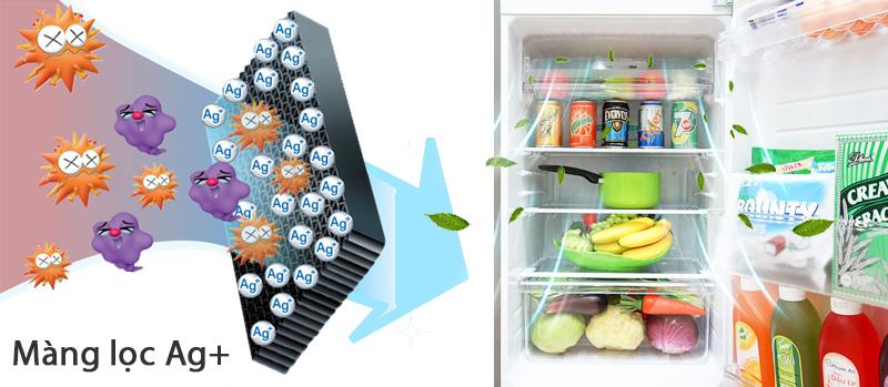 Phân tử bạc khử mùi hôi cho tủ lạnh