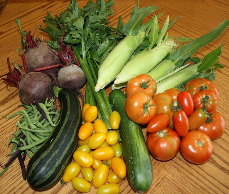 Tủ lạnh cung cấp vitamin cho thực phẩm thêm tươi mới