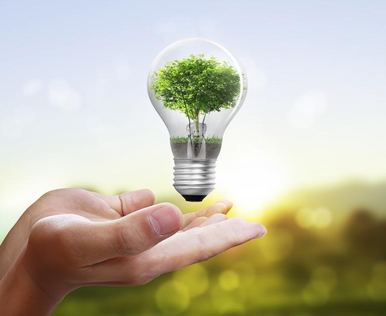 Tủ lạnh sử dụng hệ thống đèn LED tiết kiệm điện, thân thiện môi trường