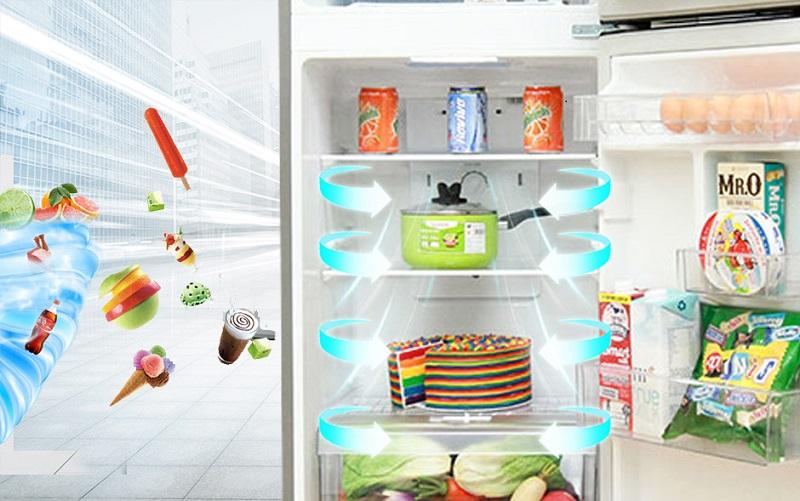ừ đấy, công nghệ này giúp cho thực phẩm chứa trong tủ lạnh LG GN-L205PS thêm phần tươi ngon