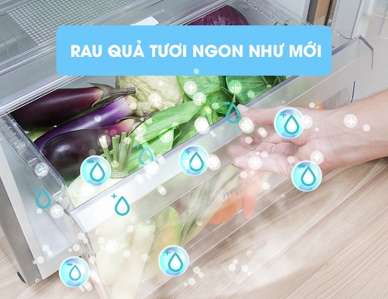 Ngăn rau củ có khả năng giữ ẩm cao