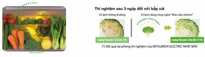 Tăng lượng vitamin C trong rau quả