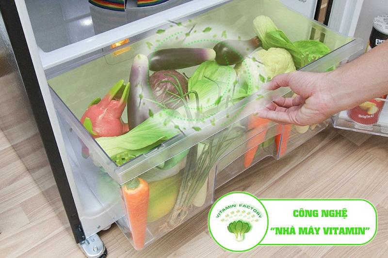 Tủ lạnh Mitsubishi Electric MR-F42EH-SLW có nhà máy Vitamin