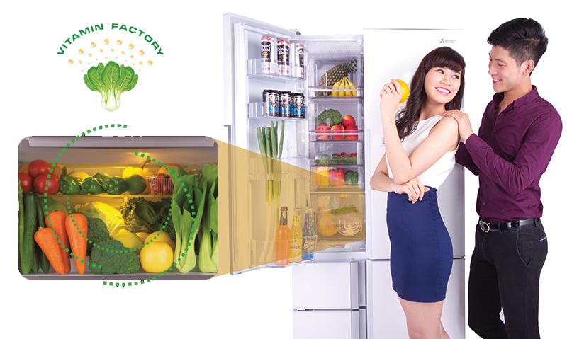 Nhà máy Vitamin cho rau, củ, quả