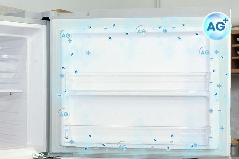 Với đệm cửa chống nấm mốc, tủ lạnh Hitachi R-V540PGV3 ngăn chặn mọi trường hợp vi khuẩn và nấm mốc xâm nhập vào tủ