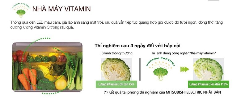 Nhà máy Vitamin ngay bên trong tủ