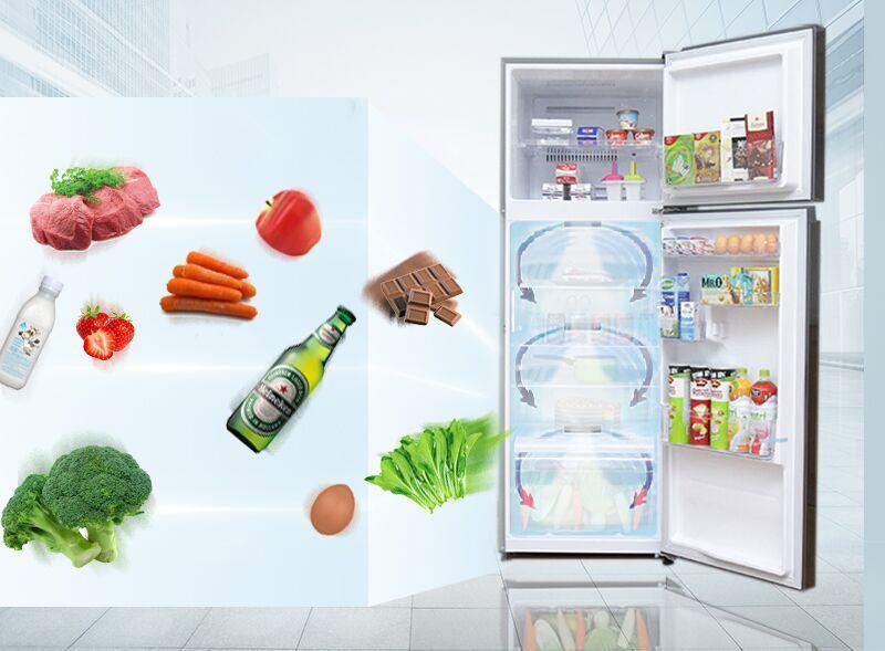 Sở hữu vòng khí lạnh vòng cung, tủ lạnh Toshiba GR-T39VUBZ(FS) sẽ giúp cho thực phẩm được làm lạnh một cách nhanh hơn