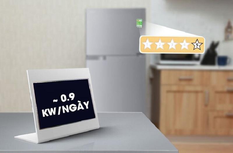 Nhờ đó, chiếc tủ lạnh này chỉ hao tốn khoảng 0.9 kW điện năng trong mỗi ngày
