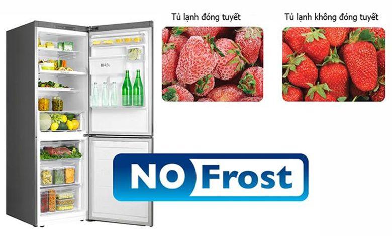 Tủ lạnh không đóng tuyết giúp rau củ quả tươi ngon hơn