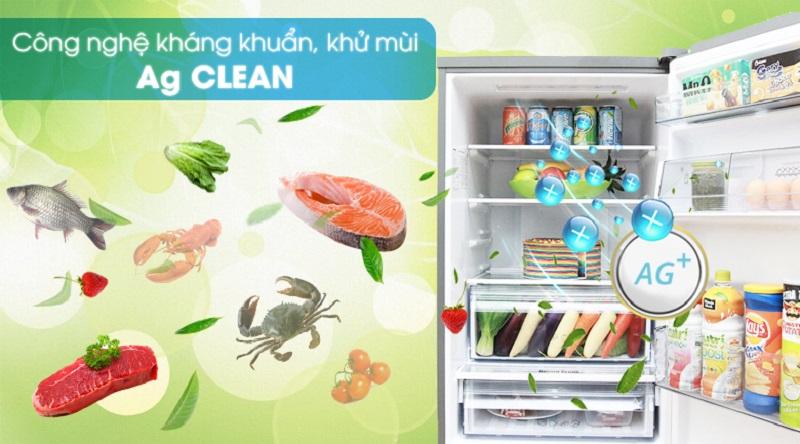 Công nghệ Ag Clean bảo vệ sức khỏe gia đình bạn - Tủ lạnh Panasonic Inverter 290 lít NR-BV328XSVN