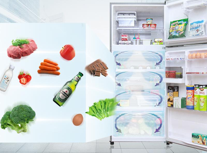 Tính năng làm lạnh vòng cung của tủ lạnh Toshiba GR-T41VUBZ LS1 đưa luồng khí lạnh luân phiên đi khắp tủ
