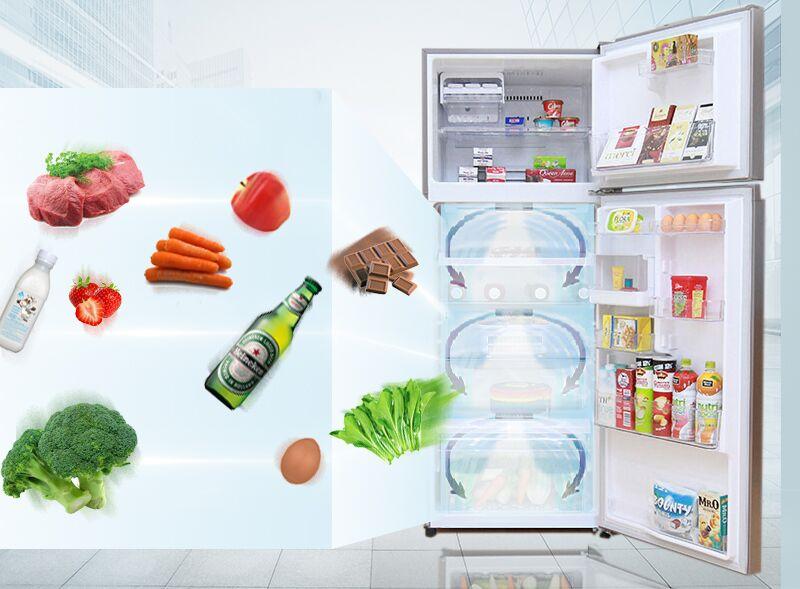 Luồng khí lạnh vòng cung mang lại cho tủ lạnh Toshiba GR-T46VUBZ N1 khả năng đưa khí lạnh đi khắp tủ