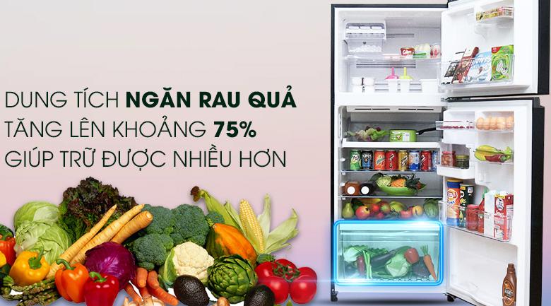 Ngăn rau củ rộng - Tủ lạnh Toshiba Inverter 359 lít GR-TG41VPDZ