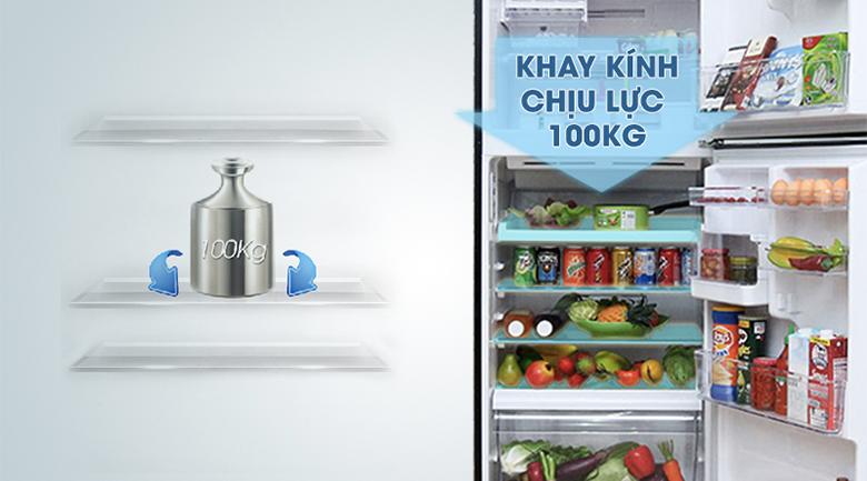 Hệ thống khay kệ phong phú - Tủ lạnh Toshiba Inverter 359 lít GR-TG41VPDZ