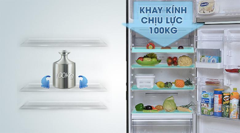 Khay kệ có khả năng chịu lực cao - Tủ lạnh Toshiba Inverter 409 lít GR-TG46VPDZ