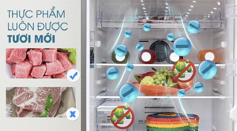 Bộ lọc than hoạt tính giúp lọc sạch không khí bên trong tủ - Tủ lạnh Samsung Inverter 380 lít RT38K5982SL/SV